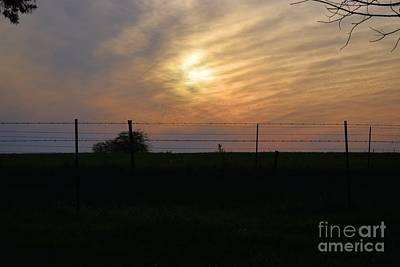Photograph - Country Sunset by Mark McReynolds