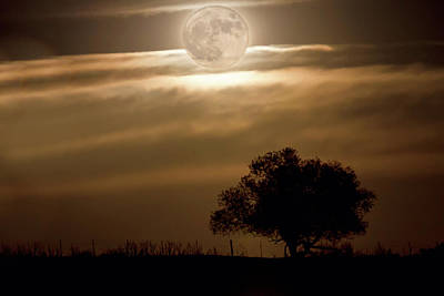 Photograph - Country Supermoon by James BO Insogna