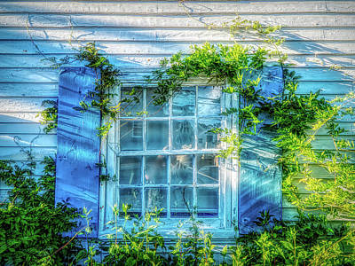 Photograph - Country Window by Lilia D