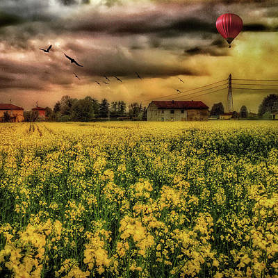 Photograph - Countryscape With Air Balloon by Roberto Pagani