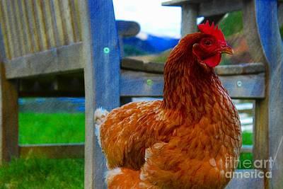 Countryside Chicken Art Print