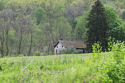 Photograph - Countryside by Donald C Morgan