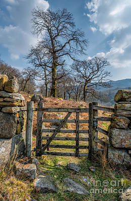 Countryside Gate Art Print by Adrian Evans