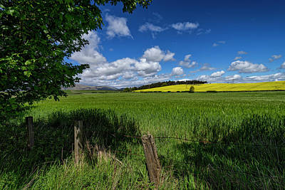 Photograph - Countryside In Clackmannanshire by Jeremy Lavender Photography