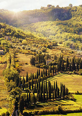 Countryside In Tuscany Italy With Cyprus Trees Art Print