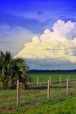 Photograph - Countryside June Storm by Sheri McLeroy