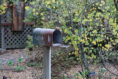 Photograph - Countryside Mail  by Christy Pooschke