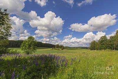 Painterly Photograph - Countryside by Veikko Suikkanen