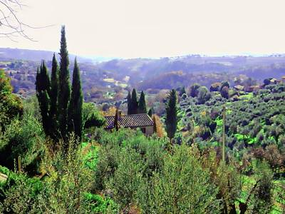 Photograph - Countryside View From Panicale 1 by Dorothy Berry-Lound