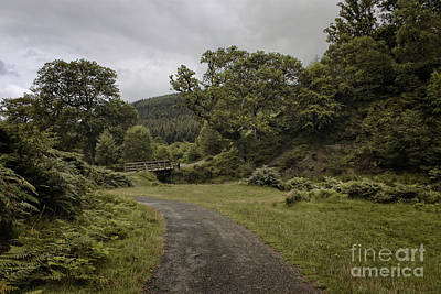 Photograph - County Kilkenny - Ireland by Doc Braham