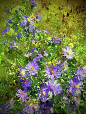 Photograph - County Wild Flowers by Cedric Hampton