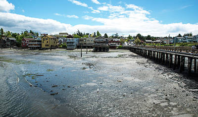Photograph - Coupeville Ebb Tide by Tom Cochran
