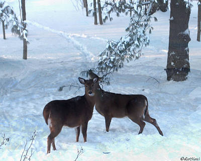 Studio Grafika Patterns - Couple Deer by Listen LeeMarie