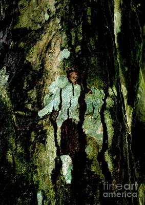 Couple On A Tree Art Print by Rushan Ruzaick