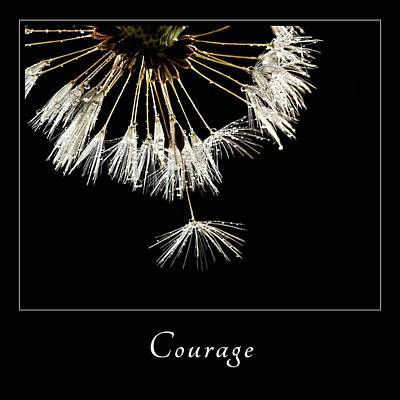 Print featuring the photograph Courage 3 by Mary Jo Allen