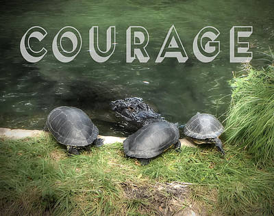 Photograph - Courage by Judy Hall-Folde
