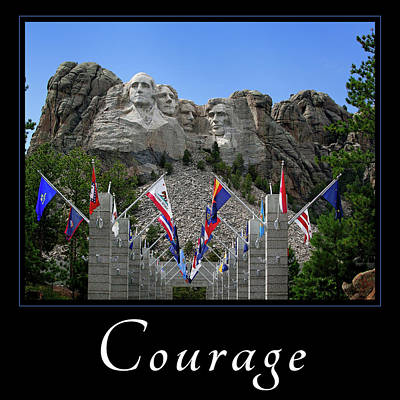 Photograph - Courage by Mary Jo Allen