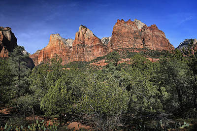 Photograph - Court Of The Patriarchs - Zion by Nikolyn McDonald