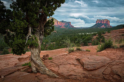Photograph - Courthouse Butte by Rick Strobaugh