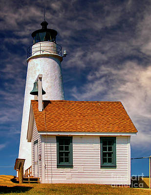 Photograph - Cove Point Light by Nick Zelinsky