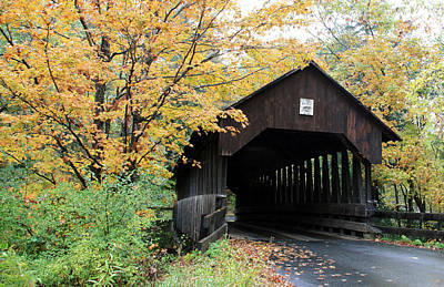 Photograph - Covered Bridge Number 22 by George Jones