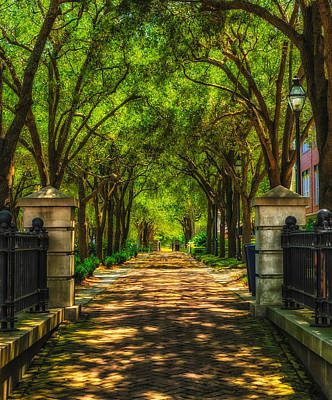 Photograph - Covered Pathway - Charleston by Frank J Benz