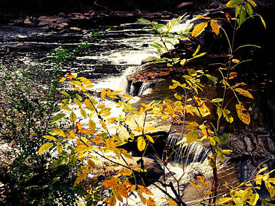 Photograph - Covington Fall by Michael L Kimble
