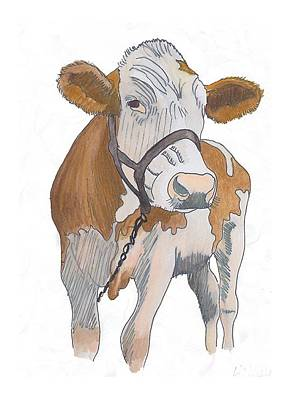 Drawing - cow by Amanda Mitchell