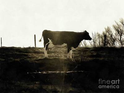 Photograph - Cow - Black And White - Profile by Janine Riley