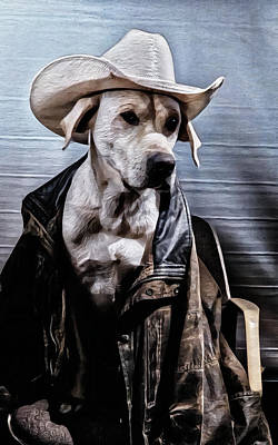 Photograph - Cow Dog by Philip A Swiderski Jr