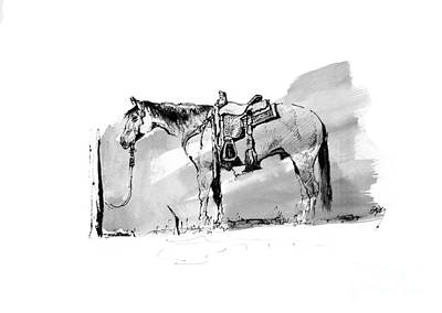 Drawing - Cow Horse Hitched by Paul Miller