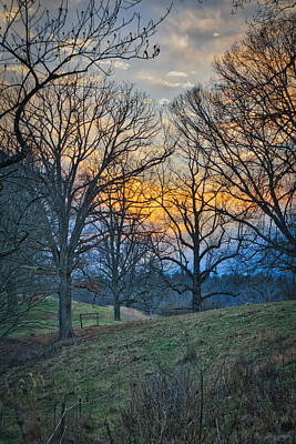 Cow Pasture At Dusk Art Print