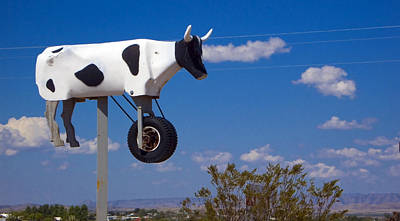 Blue Photograph - Cow Power by Skip Hunt