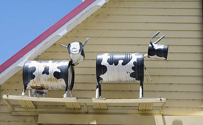 Photograph - Cow Sculptures by Steven Ralser