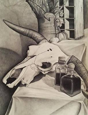 Crate Drawing - Cow Skull Still-life by Stefni Fraser