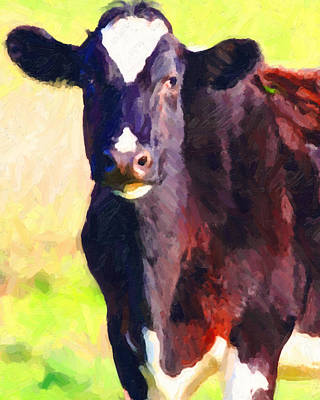 Photograph - Cow Stare 2 . Photoart by Wingsdomain Art and Photography