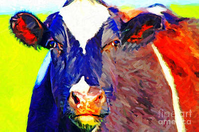 Wings Domain Photograph - Cow Stare . Photoart by Wingsdomain Art and Photography