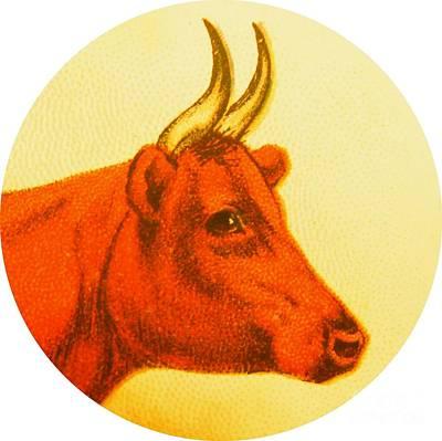 Cow V Art Print