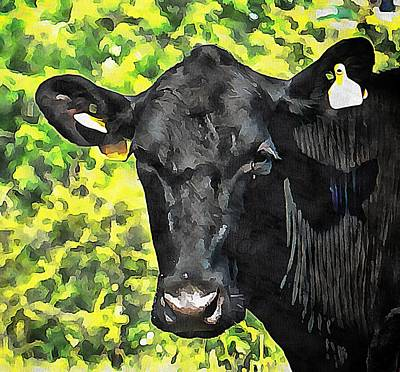 Photograph - Cow With Yellow Earrings by Dorothy Berry-Lound