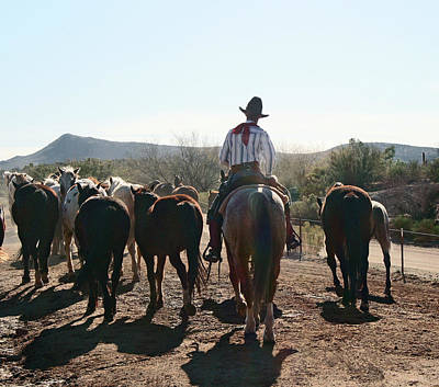 Photograph - Cowboy And Horse Herd by Elizabeth Rose