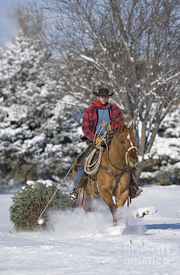 Horse Snow Photograph - Cowboy Christmas by Carol Walker