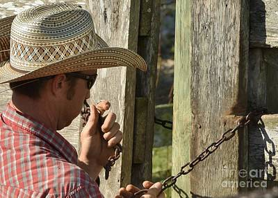 Working Cowboy Photograph - Cowboy Hands by Lisa Renee Ludlum