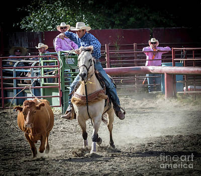 Photograph - Cowboy In Action#2 by Sal Ahmed