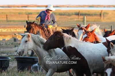 Photograph - Cowboy Maverick 2015 by Captain Debbie Ritter