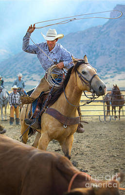 Photograph - Cowboy Roping A Steer by Diane Diederich