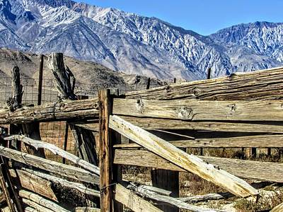 Photograph - Cowboy Wood by Marilyn Diaz