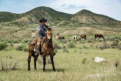 Working Cowboy Photograph - Cowboy Wrangler Ranch Hand On Horse With Rope Watching Over Horse Herd by Georgia Evans