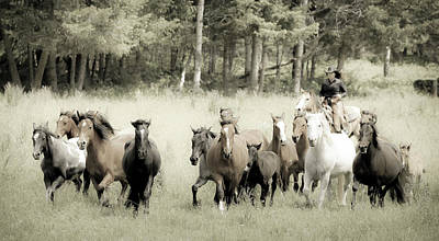 Photograph - Cowgirl Horse Round Up by Athena Mckinzie