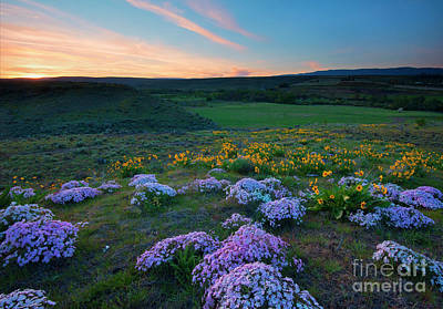 Phlox Photograph - Cowiche Sunset by Mike Dawson