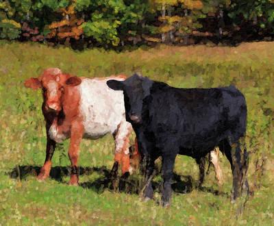 Digital Art - Cows Artwork by Jill Lang